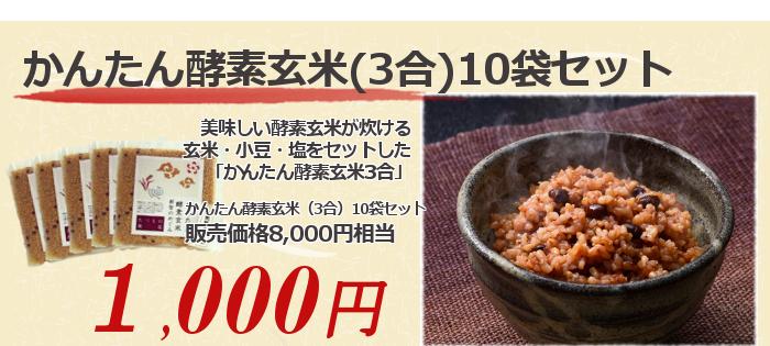 酵素玄米10袋セット