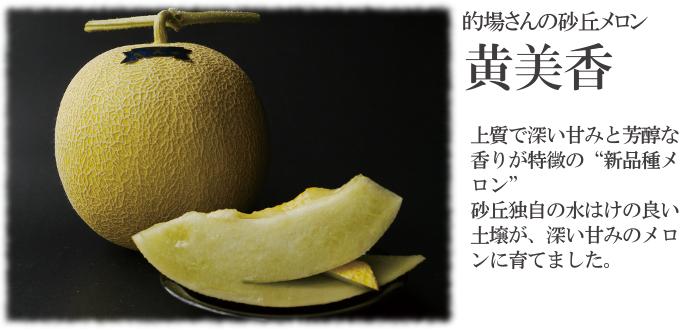 砂丘メロン黄美香の特徴