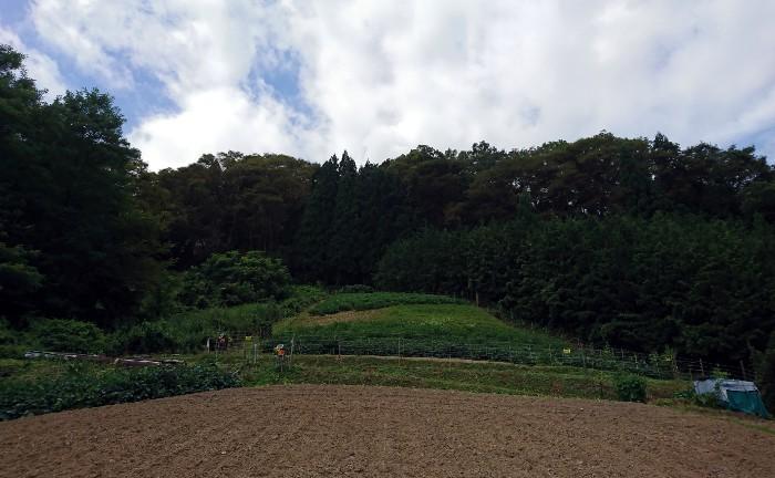 池田町陸郷桜仙峡寺島さんの畑